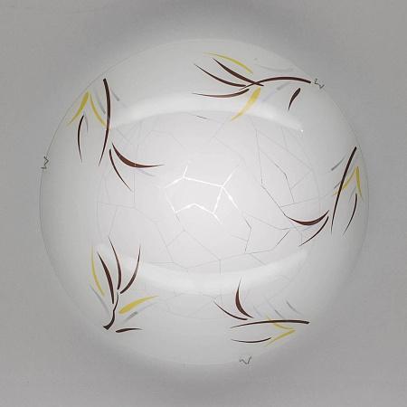 Настенный светильник Citilux Ива CL918009