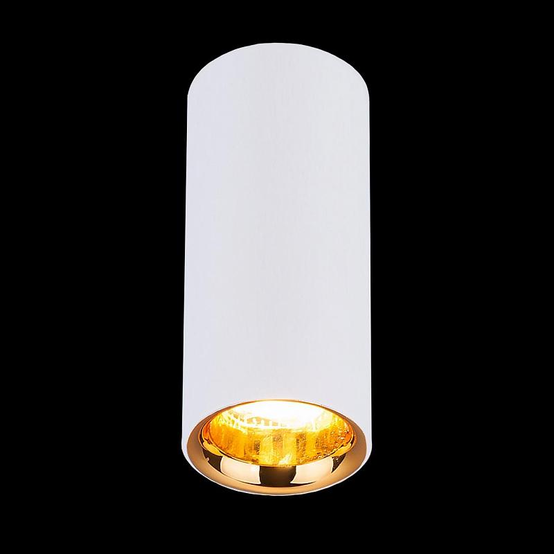 Потолочный светодиодный светильник Elektrostandard DLR030 12W 4200K белый матовый 4690389122026