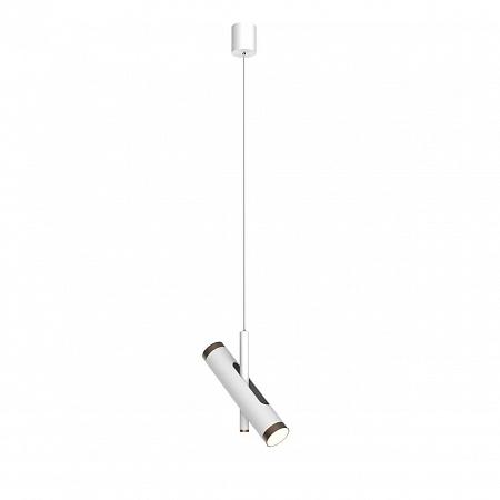 Подвесной светодиодный светильник Favourite Duplex 2325-2P