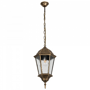 Уличный подвесной светильник Arte Lamp Genova A1204SO-1BN