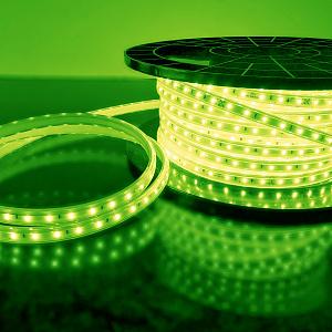 Светодиодная лента Elektrostandard LS004 220V зеленый