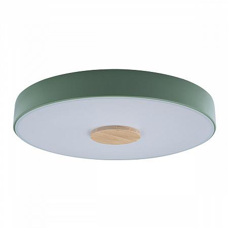 Потолочный светодиодный светильник Loft IT Axel 10003/24 green