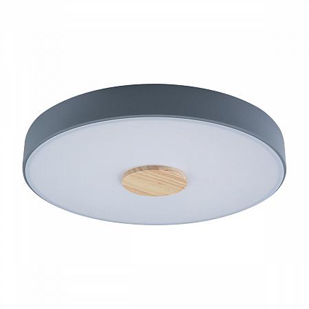 Потолочный светодиодный светильник Loft IT Axel 10003/24 grey