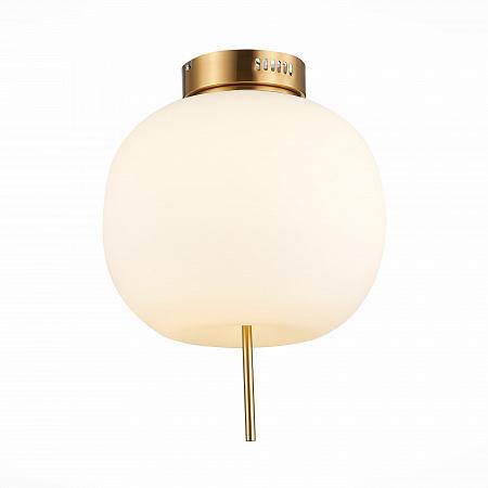 Потолочный светодиодный светильник ST Luce Lacus SL1621.202.01
