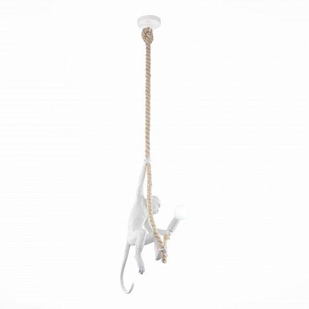 Подвесной светильник Evoluce Tenato SLE115103-01