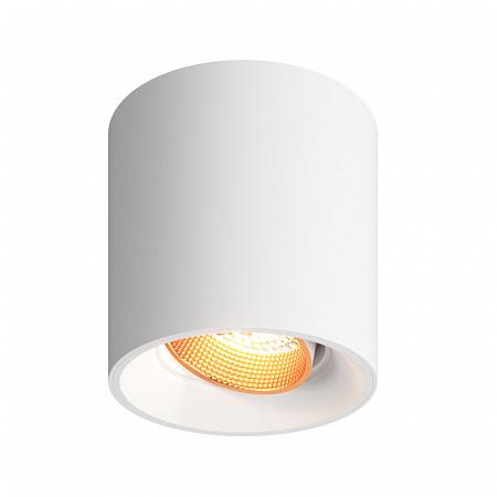 Потолочный светильник Denkirs DK3040 DK3090-WBR