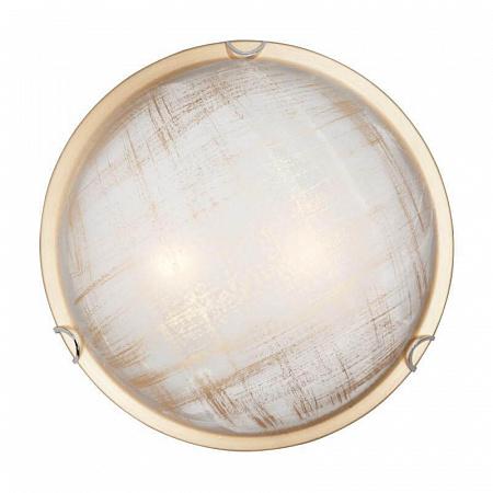 Настенно-потолочный светильник Vitaluce V6396/2A