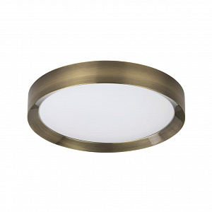 Настенно-потолочный светильник в пультом ДУ Odeon Light LUNOR 4948/45CL