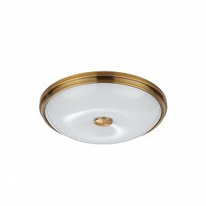 Настенно-потолочный светильник Odeon Light Pelow 4956/4