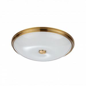 Настенно-потолочный светильник Odeon Light Pelow 4956/5