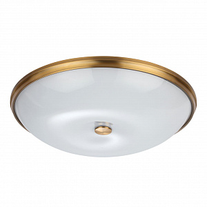 Настенно-потолочный светильник Odeon Light Pelow 4956/6