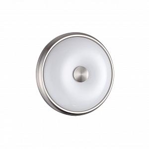 Настенно-потолочный светильник Odeon Light Pelow 4957/2