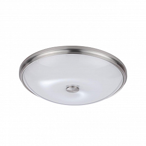 Настенно-потолочный светильник Odeon Light Pelow 4957/5