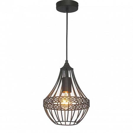 Подвесной светильник Favourite Terra 1800-1P
