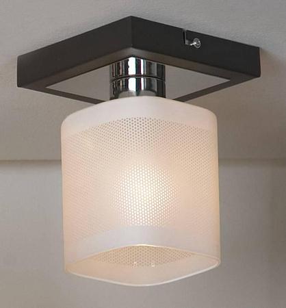 Потолочный светильник Lussole Costanzo LSL-9007-01