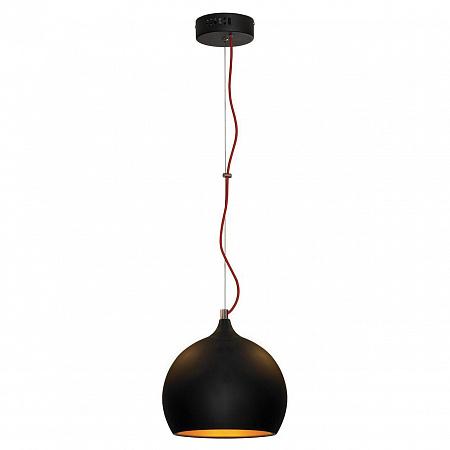 Подвесной светильник Lussole Loft LSN-6116-01