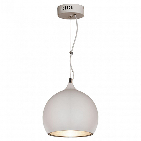 Подвесной светильник Lussole Loft LSN-6126-01