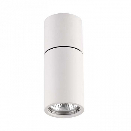 Потолочный светильник Odeon Light Duetta 3582/1C