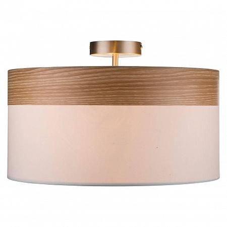 Потолочный светильник Globo Chipsy 15221D