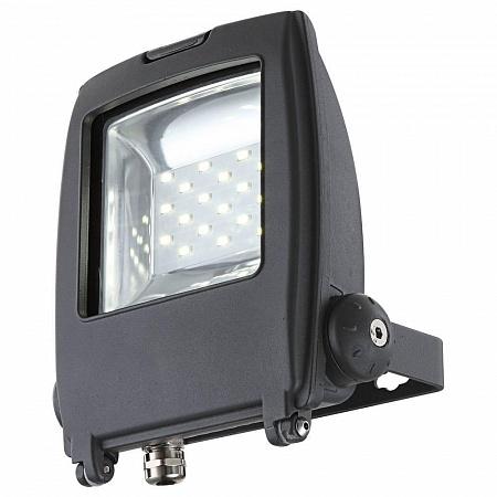 Прожектор светодиодный Globo Projecteur I 34218